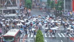 Shibuya Crossing in Tokyo in Rainy Day
