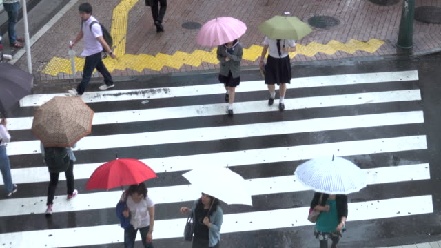 shibuya crossing in tokyo in rainy day - crossroad stock videos & royalty-free footage