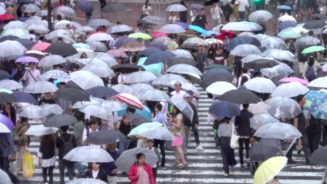shibuya crossing in tokyo in rainy day - shibuya crossing stock videos & royalty-free footage