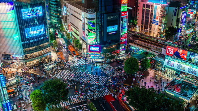 shibuya crossing in tokyo time lapse - night stock videos & royalty-free footage