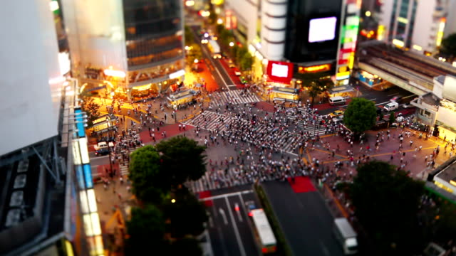 shibuya crossing in tokyo (fast) - pedestrian crossing stock videos & royalty-free footage