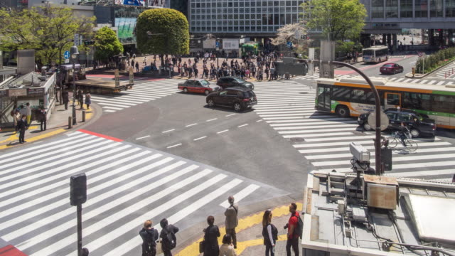 shibuya crossing intersection timelapse - japanese school uniform stock videos & royalty-free footage