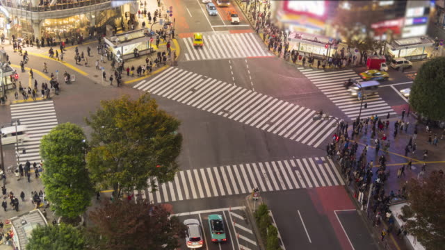 Shibuya crossing - panning time lapse