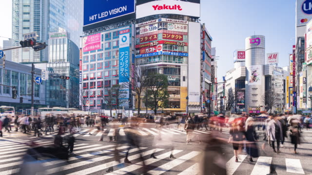 shibuya crossing road with crow in tokyo japan time lapse - road signal stock videos & royalty-free footage