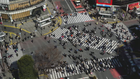 shibuya crossing square - shibuya ward stock videos & royalty-free footage