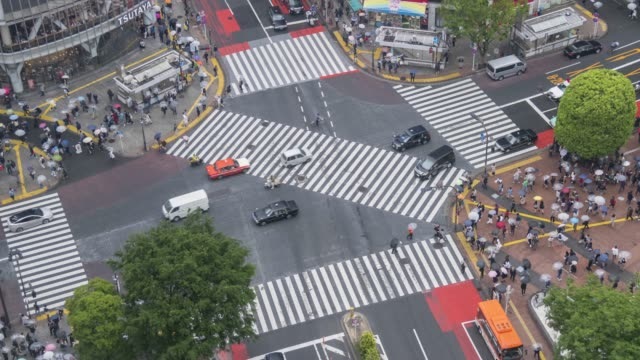shibuya crossing time lapse - zebra crossing stock videos & royalty-free footage