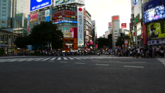 shibuya crossing time lapse video - martin luther: his life and time stock videos & royalty-free footage