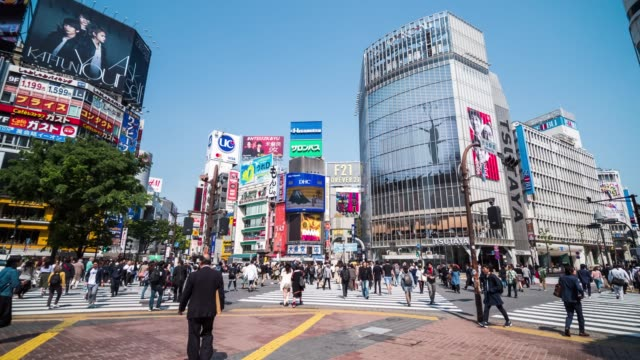 shibuya crossing tokyo, japan - capital cities stock videos & royalty-free footage