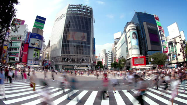 vídeos de stock, filmes e b-roll de cruzamento de shibuya em tóquio, japão - sinais de cruzamento