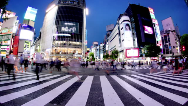 shibuya crossing tokyo japan - fish eye lens stock videos & royalty-free footage