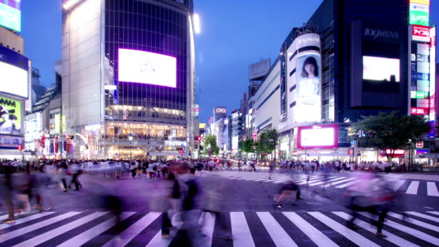shibuya crossing tokyo japan - wide stock videos and b-roll footage