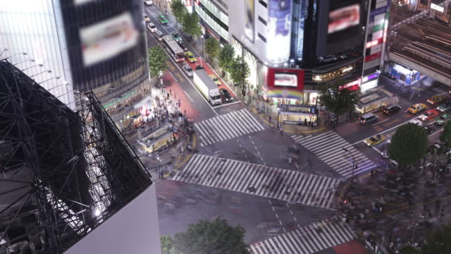 shibuya crossing, tokyo - roppongi stock videos and b-roll footage