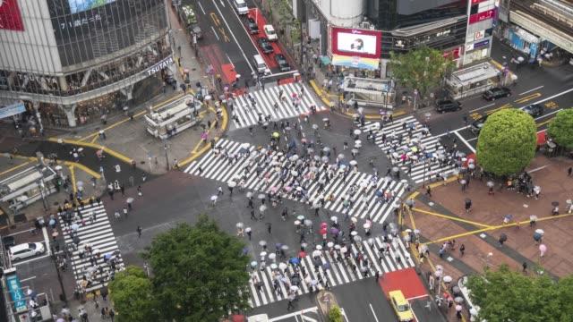 vídeos de stock, filmes e b-roll de shibuya crossing lapso de tempo superior vista ao entardecer - cruzando