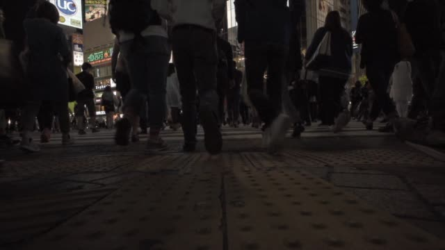 shibuya crossing - incidental people stock videos & royalty-free footage