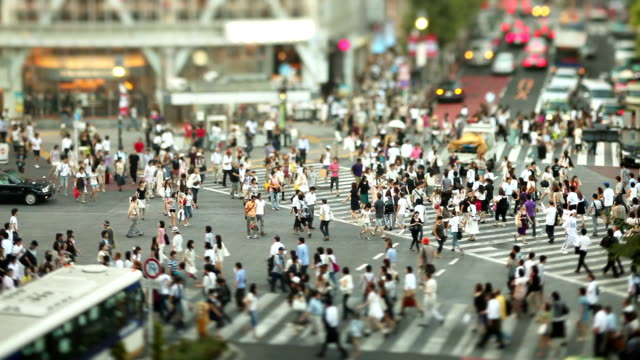 shibuya crossing - high angle view stock videos & royalty-free footage