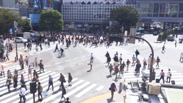 shibuya crossing - 横断する点の映像素材/bロール