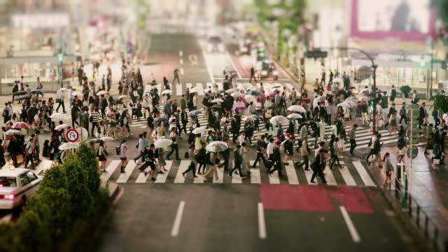 shibuya crossing - lypsekyo16 stock videos and b-roll footage