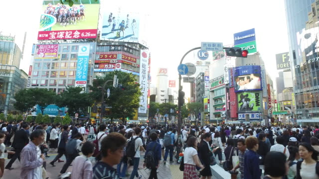 shibuya crossing,tokyo,japan - martin luther: his life and time stock videos & royalty-free footage