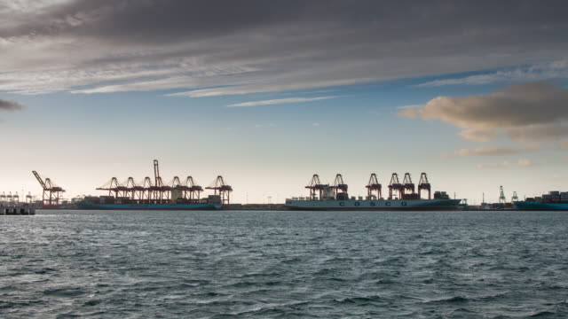 Shifting Container Cranes at Port - Timelapse