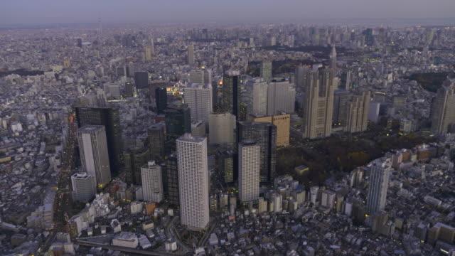 Shinjuku Buildings Aerial at dusk