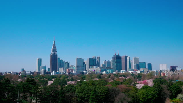 shinjuku buildings and shinjuku gyoen in spring - 10 seconds or greater stock videos & royalty-free footage