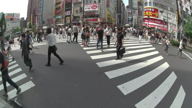 t/l,shinjuku,tokyo,japan - pedestrian stock videos & royalty-free footage
