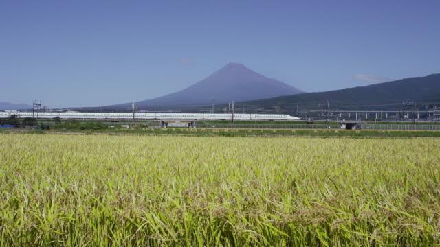 shinkansen passing in front of mt. fuji - shinkansen stock videos & royalty-free footage