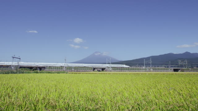 Shinkansen passing in front of Mt. Fuji