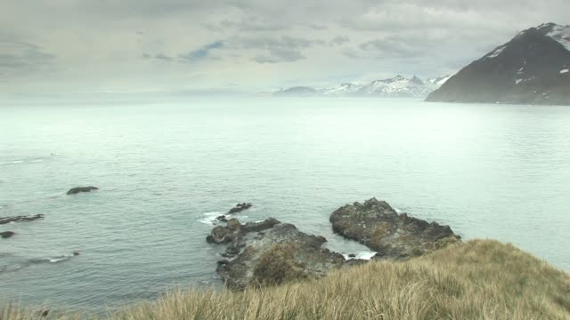 ws, pan, ship in bay, coastal mountains in background, south georgia island, falkland islands, british overseas territory - falkland islands stock videos and b-roll footage
