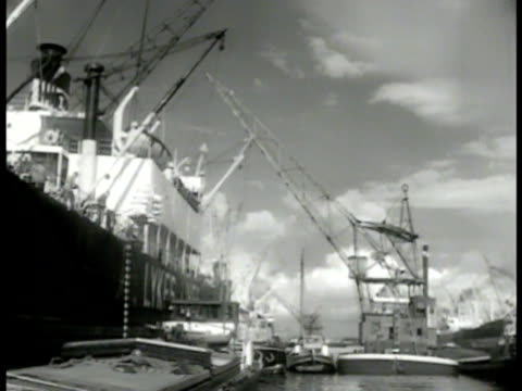 shipping dock cranes carrying loads. bags of food being lowered. ship moored in dock. dutch dock workers crane lowering cargo. - lowering stock videos & royalty-free footage