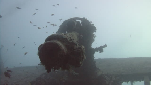 shipwreck ss thistlegorm - artillery stock videos & royalty-free footage