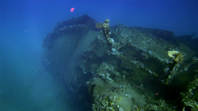 "shipwreck "" the hamada "" freighter wreckage of a large sunken ship in the red sea / abu ghusun marsa alam. - 1965 stock videos & royalty-free footage"