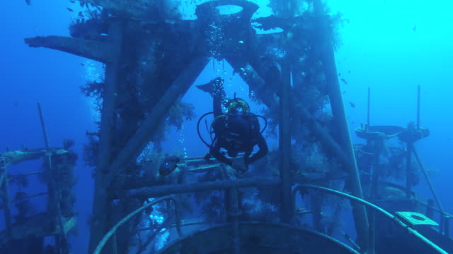 shipwreck  underwater - wrack stock-videos und b-roll-filmmaterial
