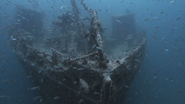 shipwreck - military ship stock videos and b-roll footage