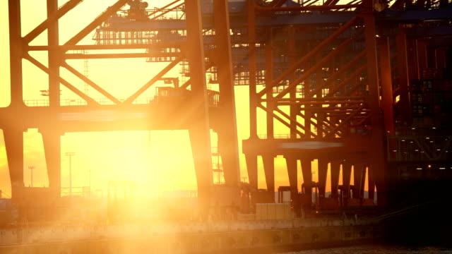 shipyard in hamburg with sun, time lapse - hamburg germany stock videos & royalty-free footage
