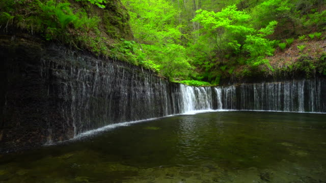 shiraito falls - karuizawa,nagano - nagano prefecture stock videos and b-roll footage