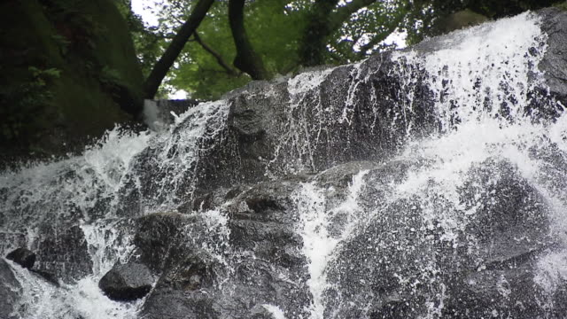 """shiraito"" means ""white thread"" the waterfall was named ""shiraito"" because the way the water flow down from the surface looks just like you are... - satoyama scenery stock videos and b-roll footage"