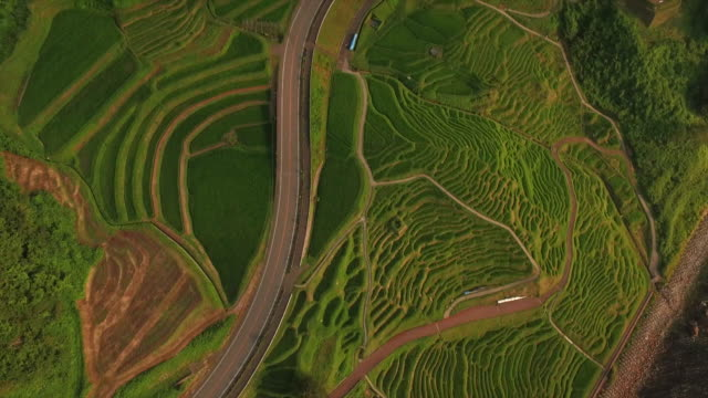 shiroyone senmaida, the most famous rice terrace in japan - ishikawa prefecture stock videos and b-roll footage