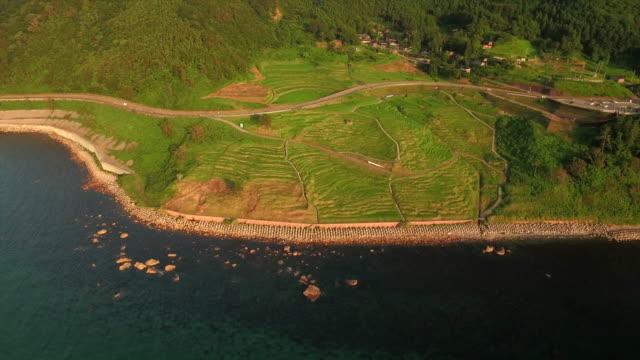 shiroyone senmaida, the most famous rice terrace in japan - insel honshu stock-videos und b-roll-filmmaterial