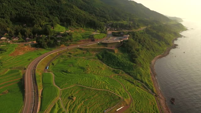 shiroyone senmaida, the most famous rice terrace in japan - rice terrace stock videos and b-roll footage