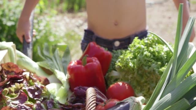 vidéos et rushes de garçon torse nu avec des légumes frais en été - carotte