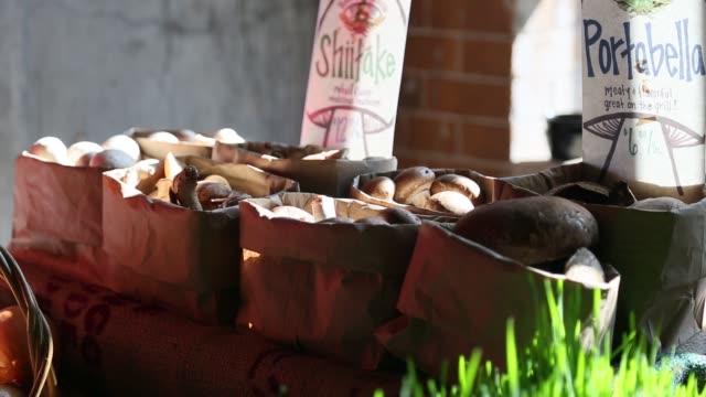 shitaki and portabello mushrooms at market - shiitake stock videos & royalty-free footage