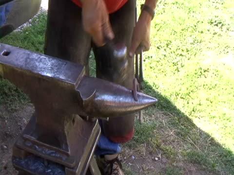 le racchette un cavallo - ferro di cavallo accessorio per animali video stock e b–roll