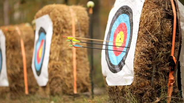 shooting arrows - hay stock videos and b-roll footage