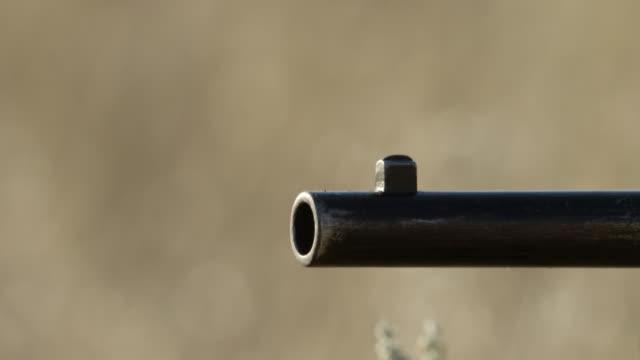 cu shooting form gun barrel / montana, united states - rifle stock videos & royalty-free footage