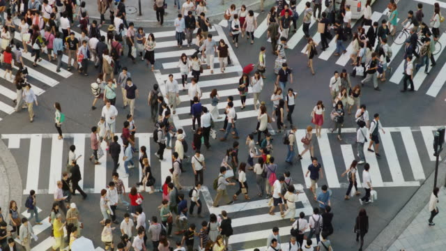 shoppers on a cross street crossing in shinjuku, tokyo, slow motion - pedestrian stock videos & royalty-free footage