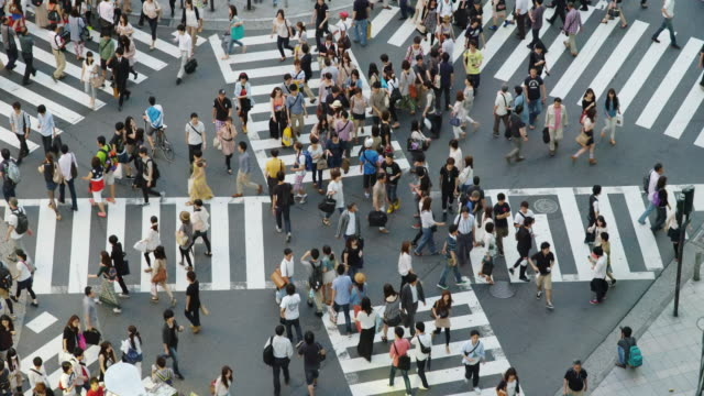 shoppers on a cross street crossing in shinjuku, tokyo - fußgänger stock-videos und b-roll-filmmaterial
