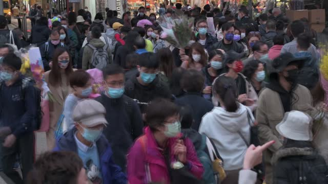 shoppers seen at a flower market in prince edward district on february 11, 2021 in hong kong, china. the lunar new year, also known as spring... - chinese culture stock videos & royalty-free footage