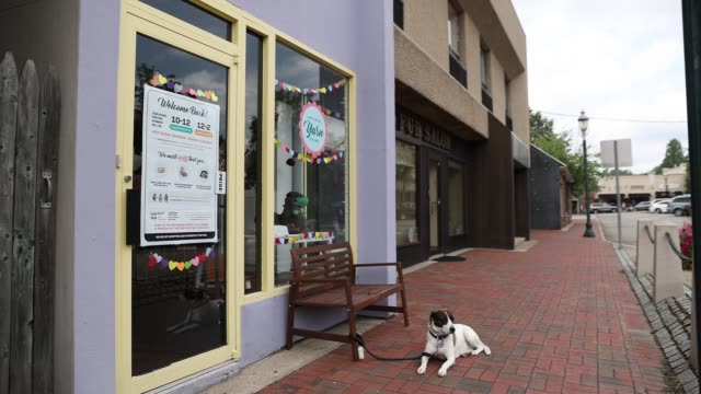shopping district appears empty as a dog sits outside a business called the local yarn store in south orange, nj, united states on july 7, 2020. - orange new jersey stock videos & royalty-free footage