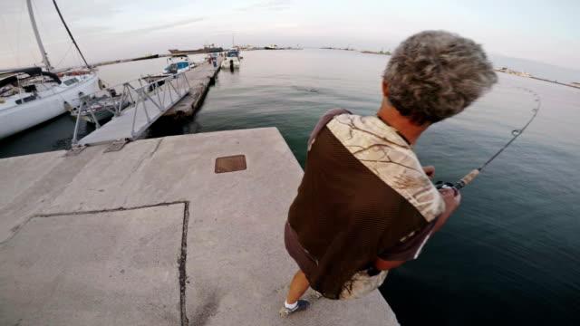 shore fishing. sea bass - sea bass stock videos & royalty-free footage